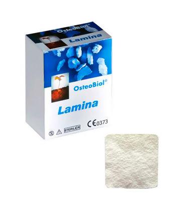 OsteoBiol Lamina Curved 35х35мм